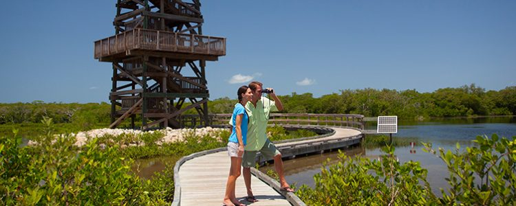 Robinson Preserve Tower in Bradenton Florida