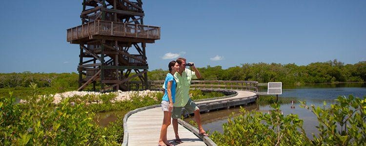 Robinson Preserve Tower in Bradenton Florida